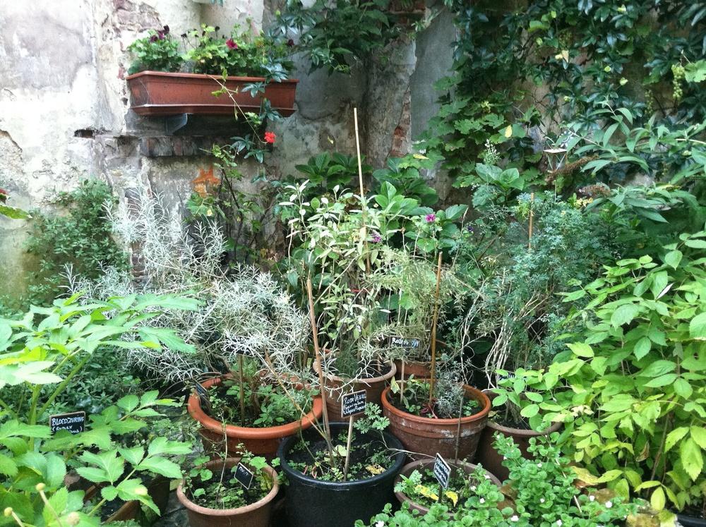 Lovely herb Garden in Brugge, Belgium