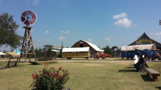 Come spend a day on the farm!