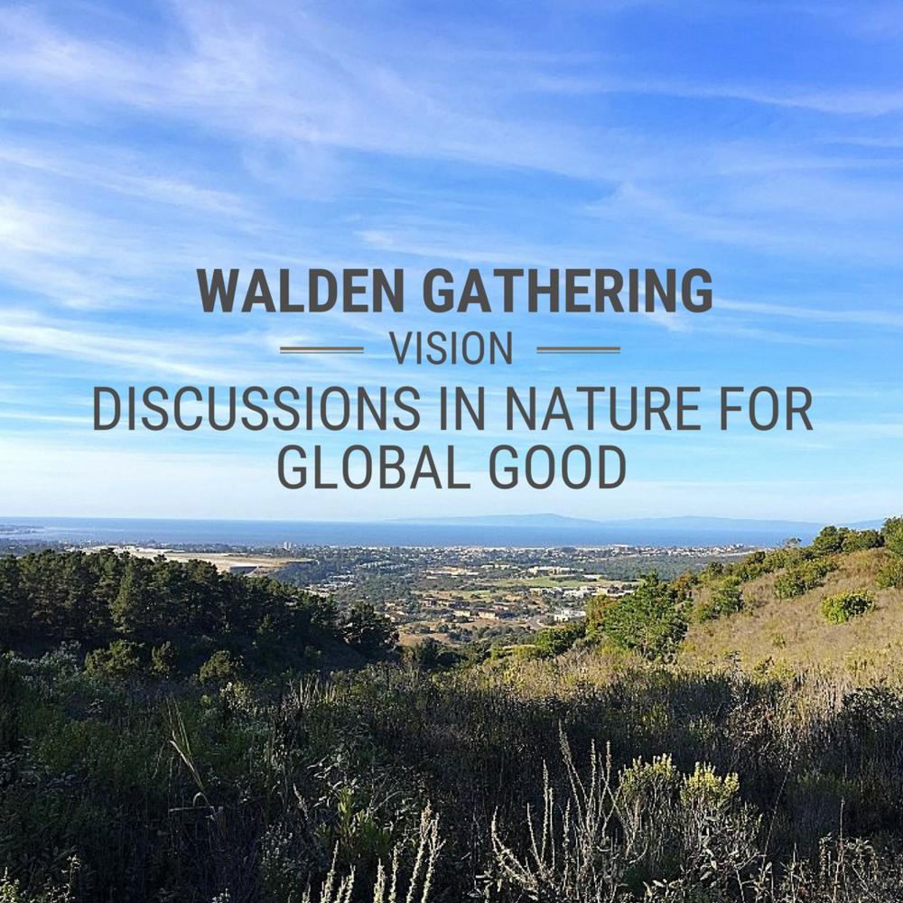 Walden GatheringVision.png