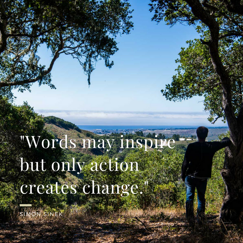 Words may inspire but only action creates change..png