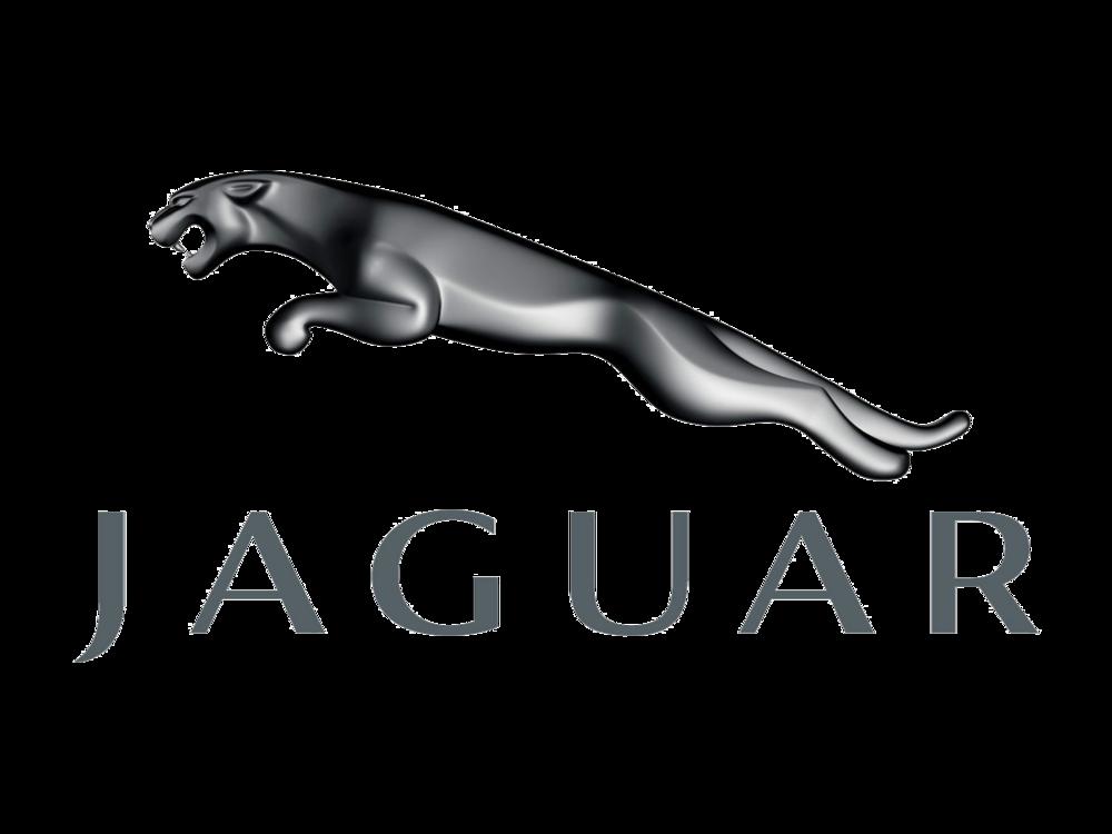 Jaguar_logo_PNG1647.png