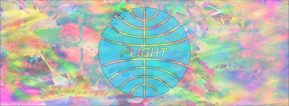 flight .jpg