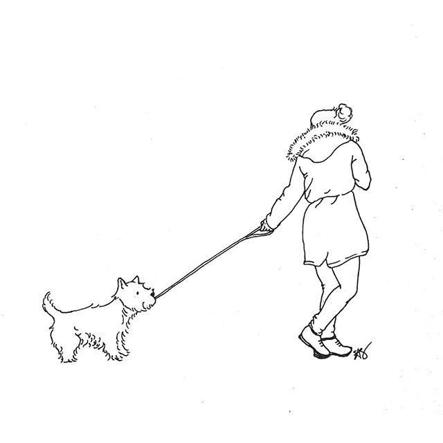 Tug of war! • • • • • #drawing #sketch #sketchbook #art #artofinstagram #doodle #penandink #dog #dogsofinstagram #woof #westhighlandterrier #westhighlandwhiteterrier #dogwalk #dailysketch #sketchaday #tugofwar #dessin