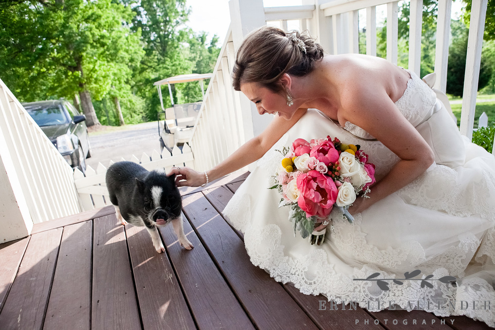 09_Bride_Pets_Pig_Front_Porch_Farm_Wedding