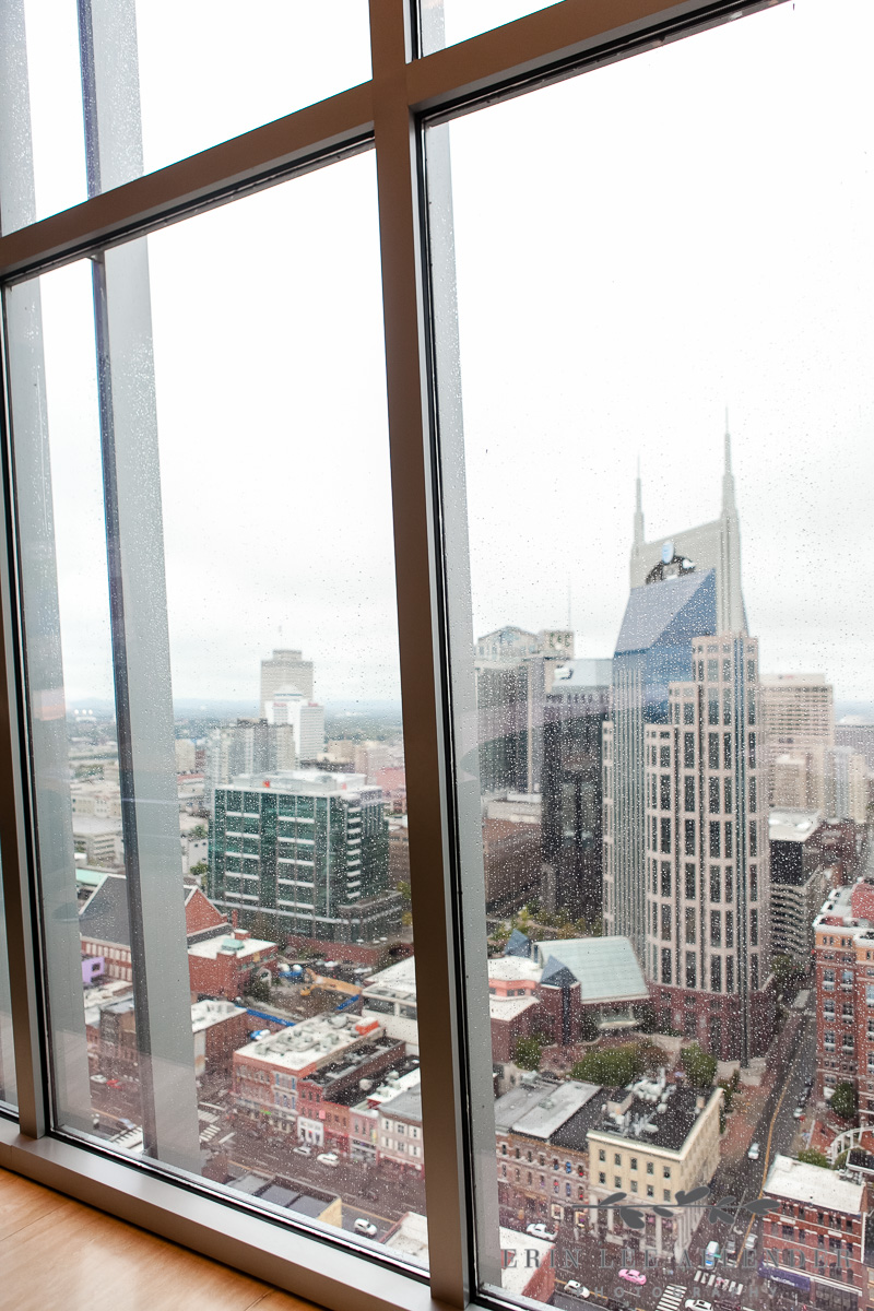 View_of_Nashville_From_Pinnacle