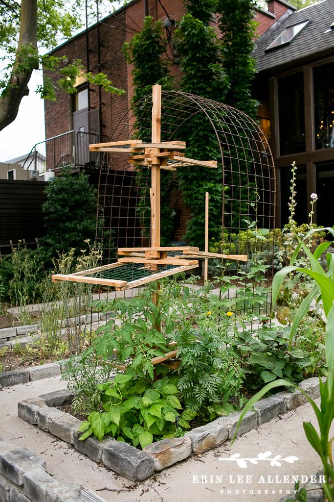 Husk_Herb_Garden