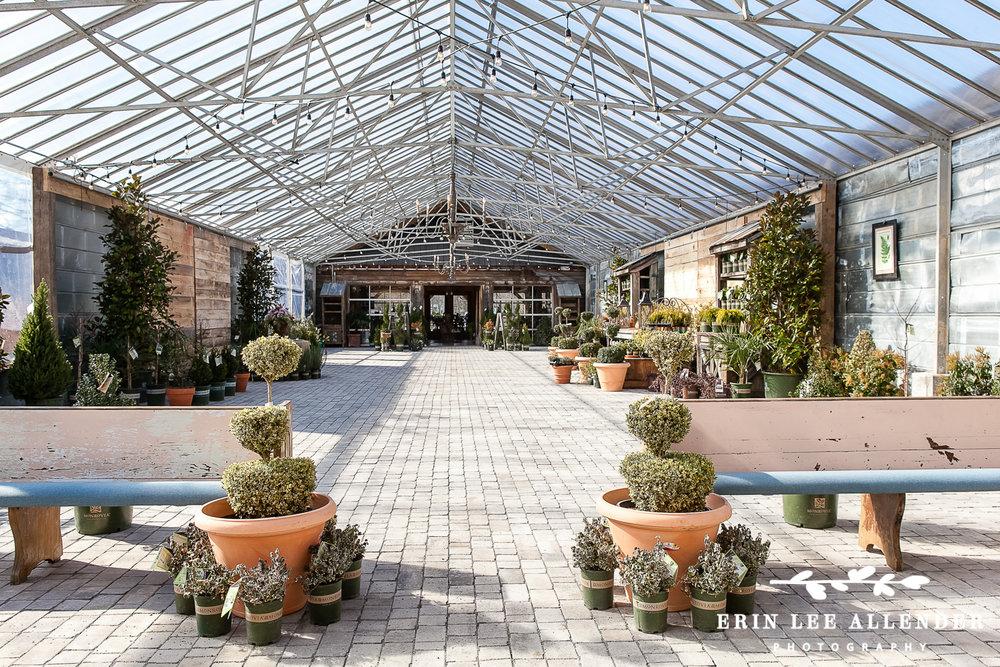 Greenhouse_Wedding