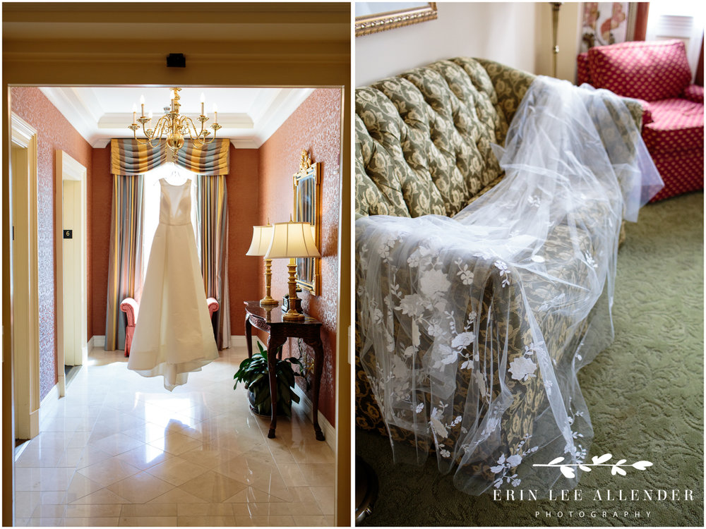 Wedding-Dress-Photograph