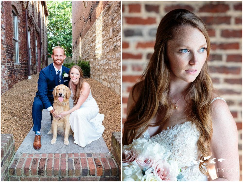dog-in-wedding