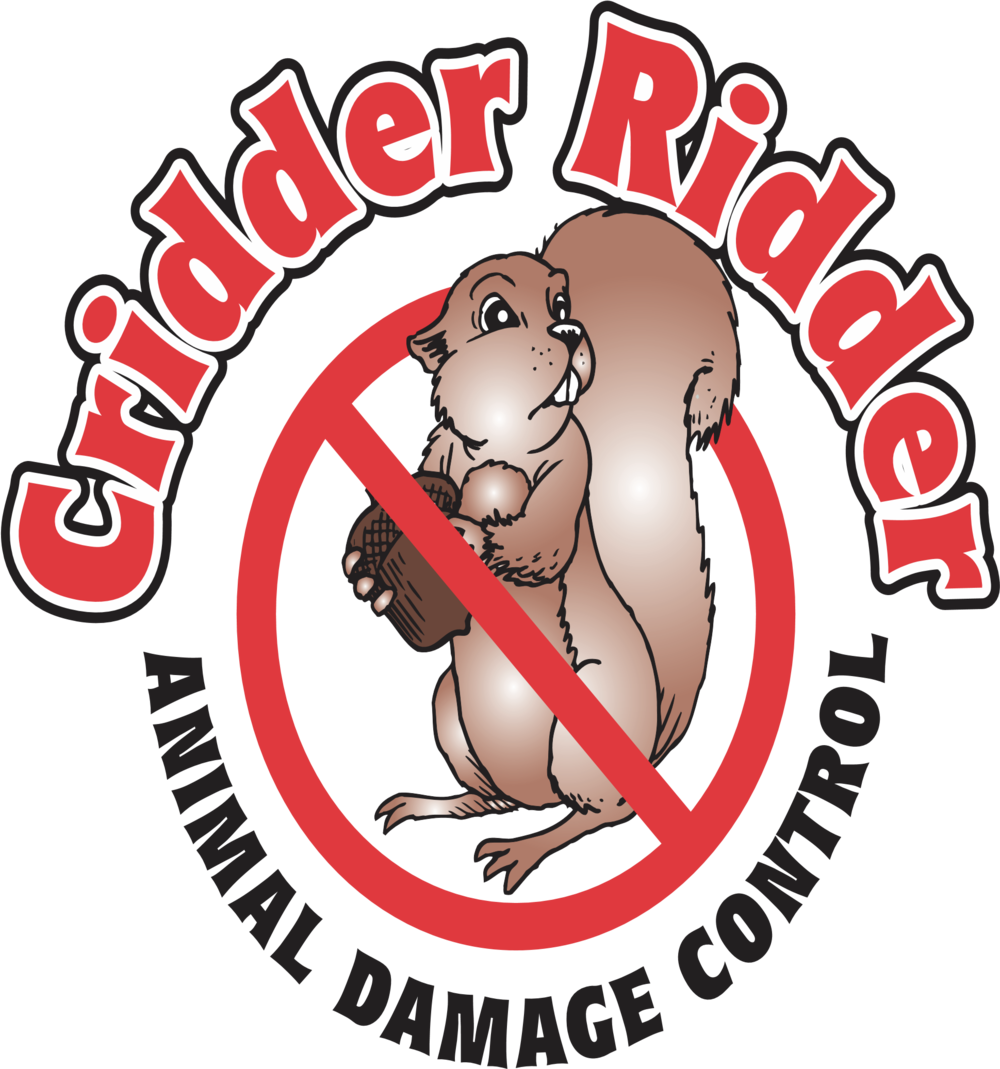 cridder-ridder-animal-control