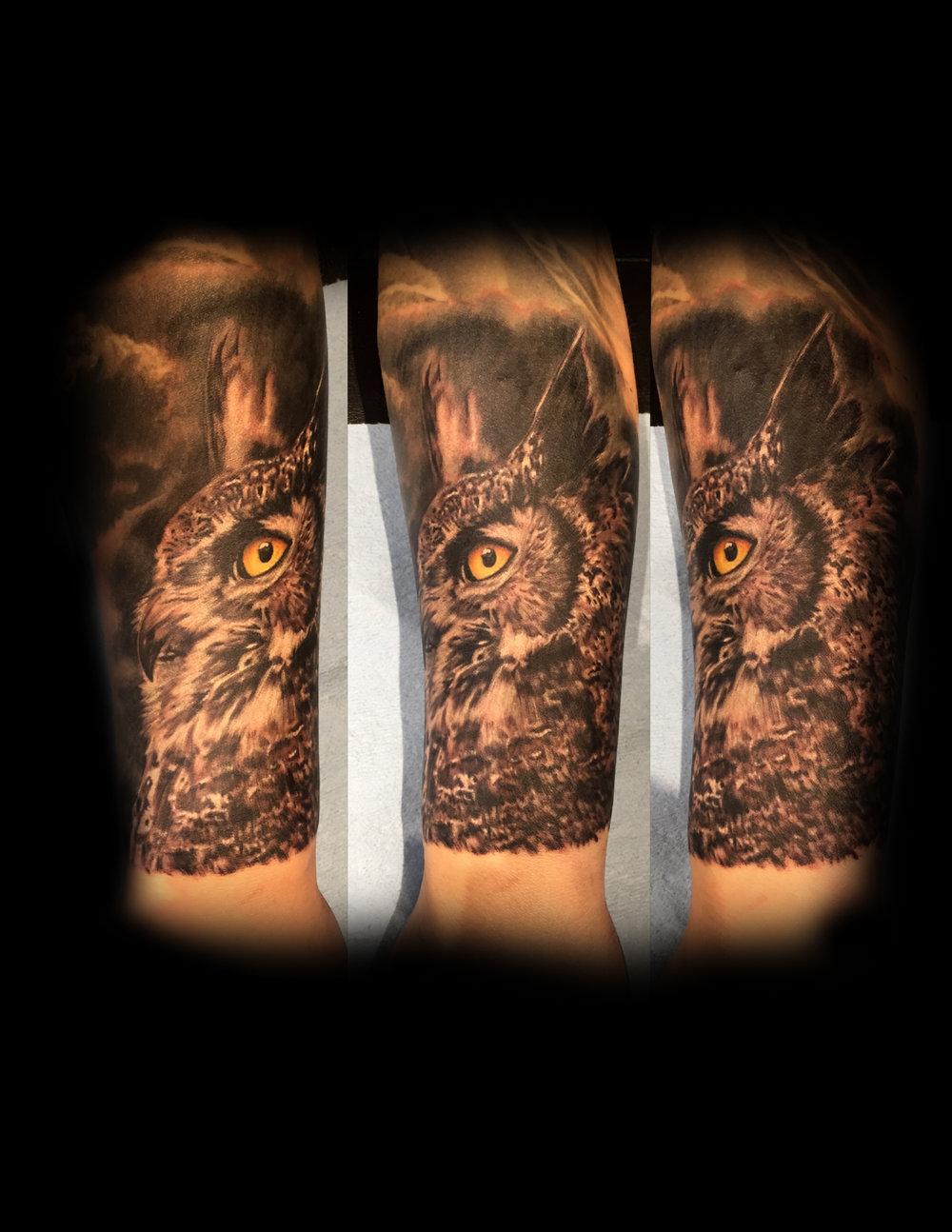 blk owl.jpg