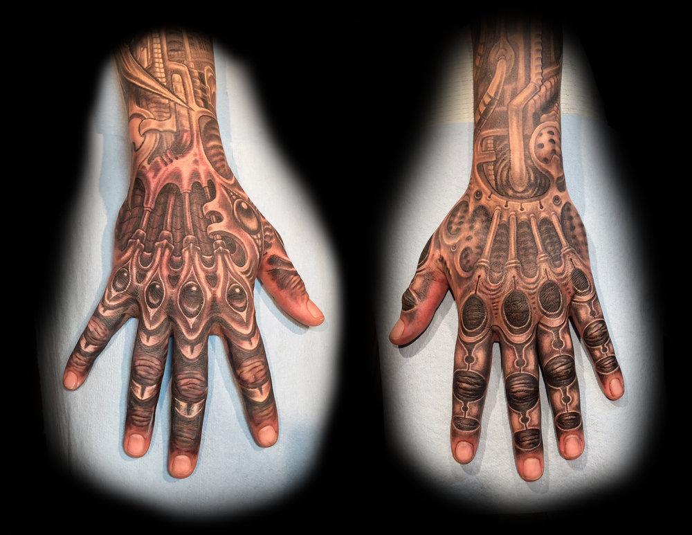 bio hands.jpg