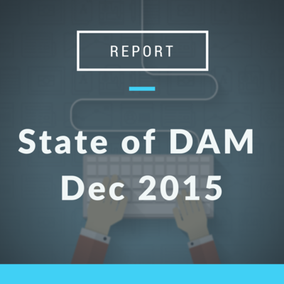 State of DAM Report