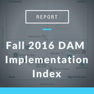 DAM Implementation Index