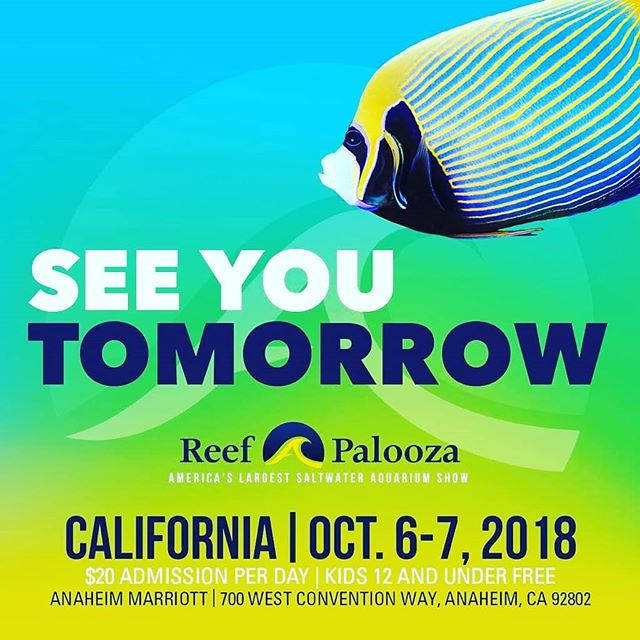 Stop by booth 318 to check out our new line of products. #kolarlabs #reef #reeftank