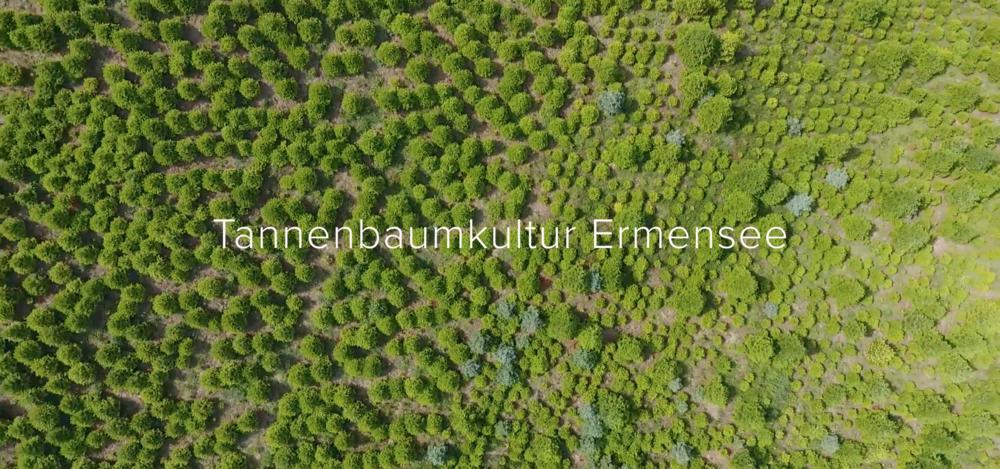 Ermensee LU - CHF 1'050'000.-