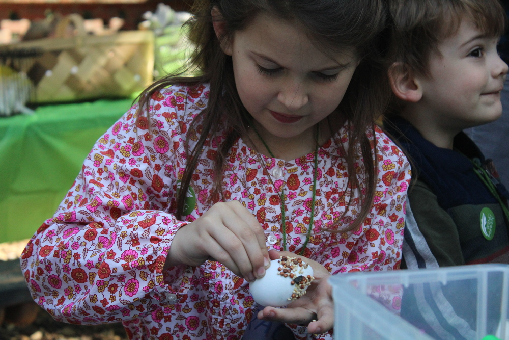 Naturalist Egg Hunt 2015!  See more