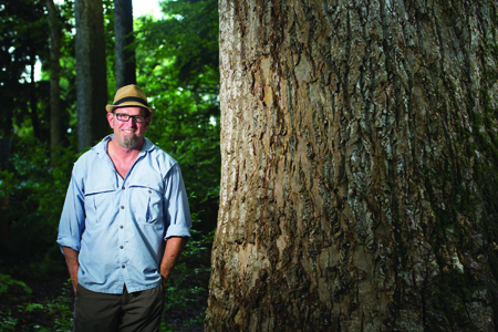 patrick w tree.jpg