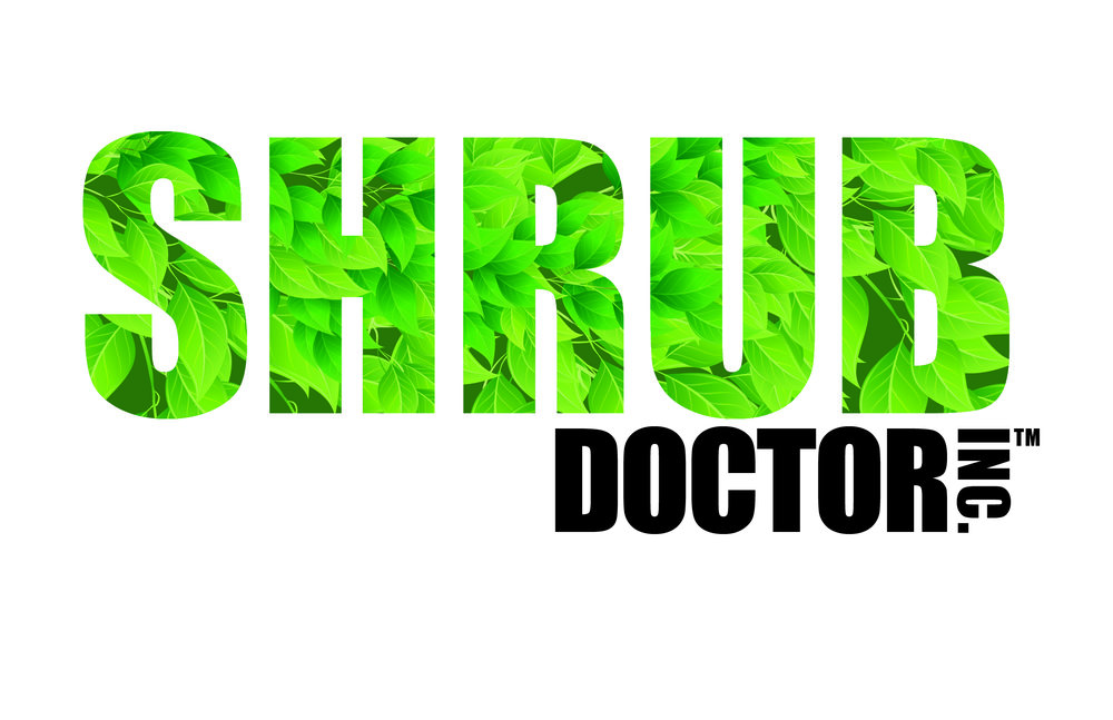 shrub doctor logo - black letters.jpg