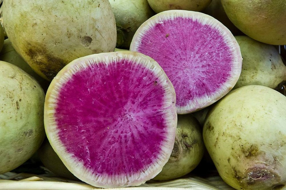 Don't be fool by its name. The watermelon radish does look like their namesake with a cool, white skin and, when cut open, a deep pink with a ring of green. But it's flavor is nothing like the sugary, front of palate bite a watermelon offers. Typically eaten raw, it's lightly peppery in flavor and nicely complements the sweetness of a beet or apple. Typically, a watermelon radish reaches the size of a baseball and is best sliced thin or diced. A one cup serving is chock full of vitamins A, C, and folate, giving you a lot of bang for your buck in the nutrition department. Click through for recipe ideas!