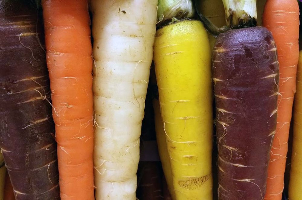 If you're wondering why your carrots are purple, red, and yellow, here's the deal. A thousand years ago, carrots were traditionally purple and yellow and now farmers are cultivating these heirloom varieties to offer a more vibrant and nutritious product. The more common orange and tangerine carrots have always been associated with beta-carotene, which promotes good vision. But mixed into the bunch are red carrots rich in prostate-aiding antioxidants, yellow and white that are also associated with eye health, and purple, which increase antioxidants in the bloodstream promoting good brain health.