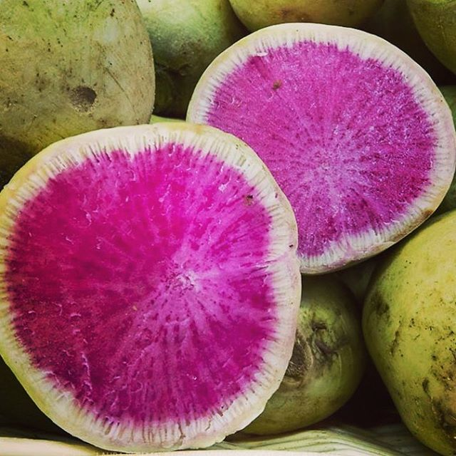 #dinnerinspiration for tonight comes in the form of a watermelon radish, a great winter-to-spring seasonal vegetable! Don't be fooled: this radish might look like its namesake when cut open, but its flavor is nothing like the sugary bite of a watermelon. Typically eaten raw, the watermelon radish is lightly peppery in flavor and nicely complements the sweetness of apples or the creaminess of avocados. For a simple side salad, try tossing diced #avocado, chopped romaine lettuce, thinly sliced #watermelonradish, and chopped #cilantro with a lemon dressing. Want other #radish recipes? Find us on #pinterest! . . . . #eatseasonal #eatlocal #localfood #pippinpicks #goodeats #eattherainbow