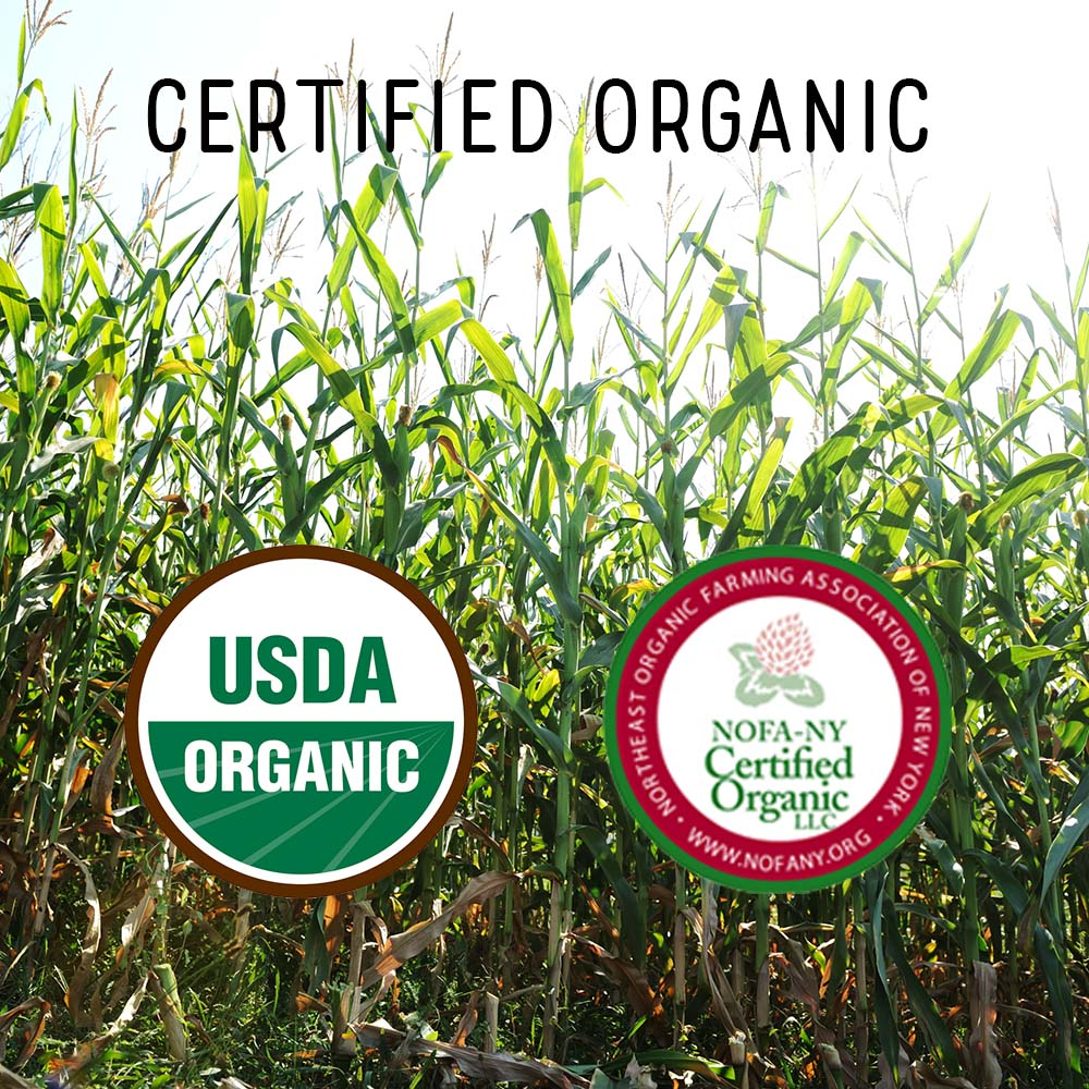 Certified Organic square.jpg