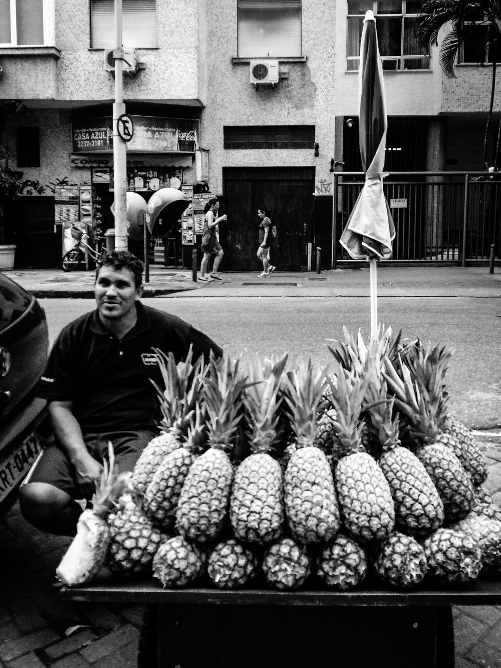 /Ananas comosus
