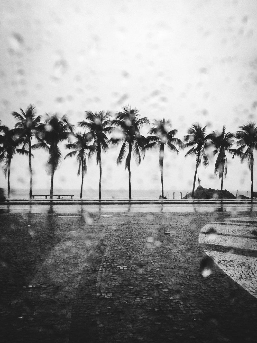 / November rain