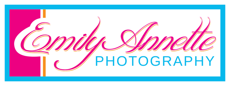 Emily Annette Photography LLC - Fairfax, Falls Church and Northern Virginia Wedding and Portrait Photographer