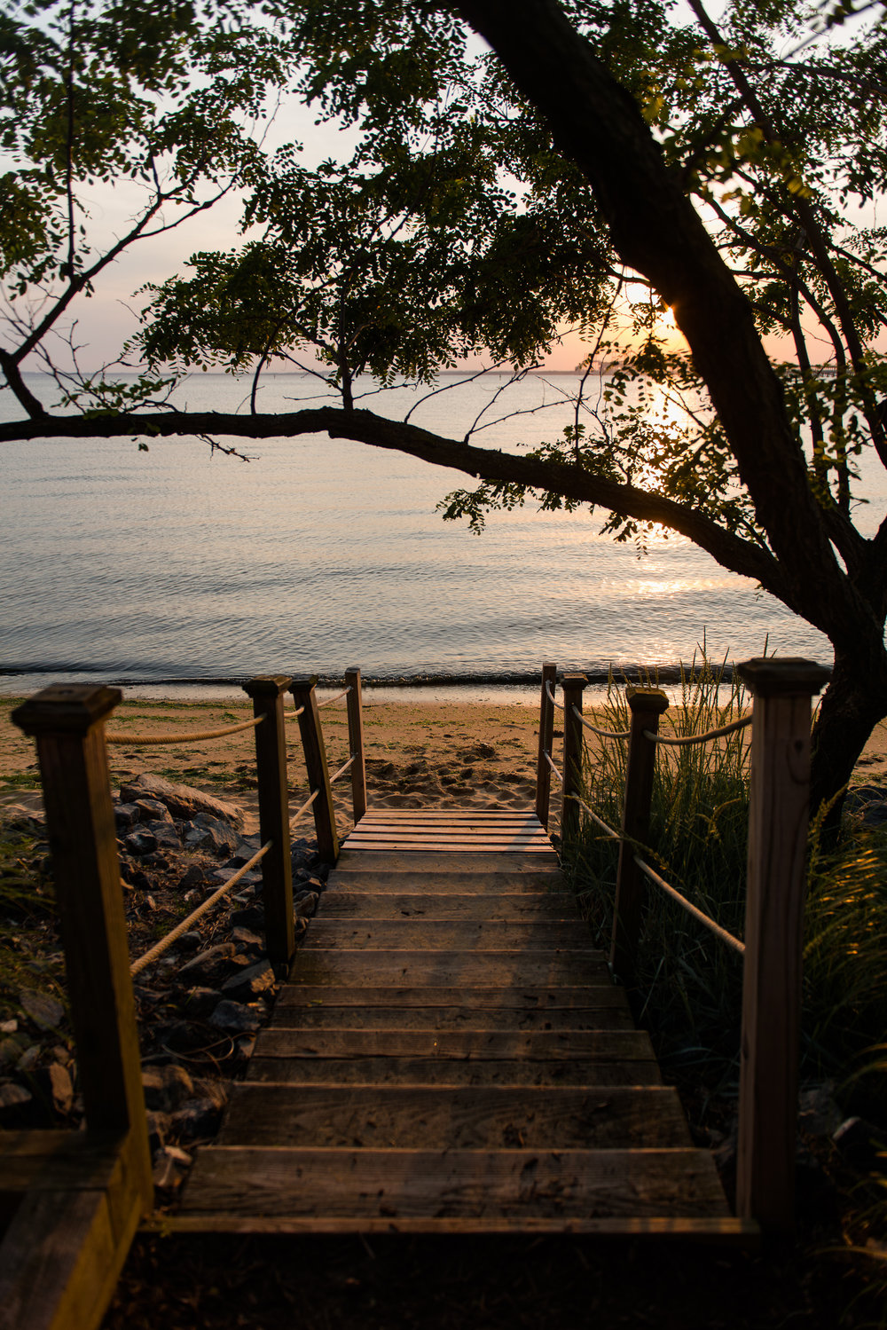A set of wooden stairs leading down to the beach at sunset at the chesapeake bay beach club in stevensville, md