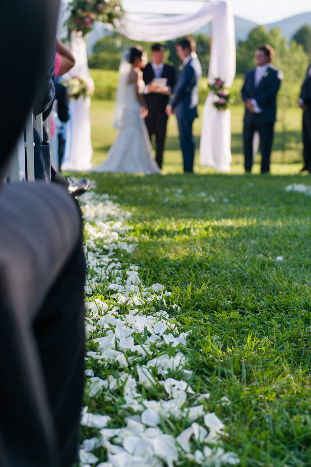 A trail of white flower petals leading to the wedding ceremony at veritas vineyards near charlottesville, virginia