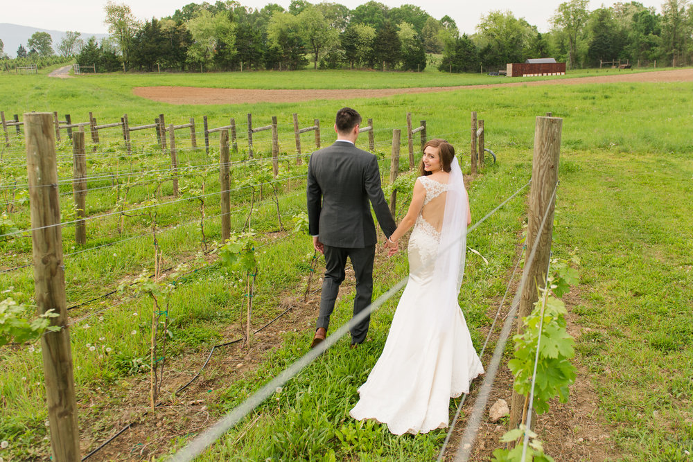 The bride looks over her shoulder as she walks with her groom through the vineyards at Faithbrooke Barn and Vineyards in Luray, Virginia