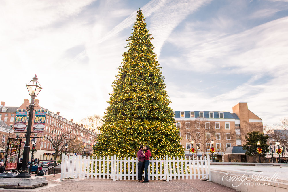 An engaged couple shares a kiss in front of the Christmas Tree along King Street in Old Town Alexandria Virginia during an engagement session