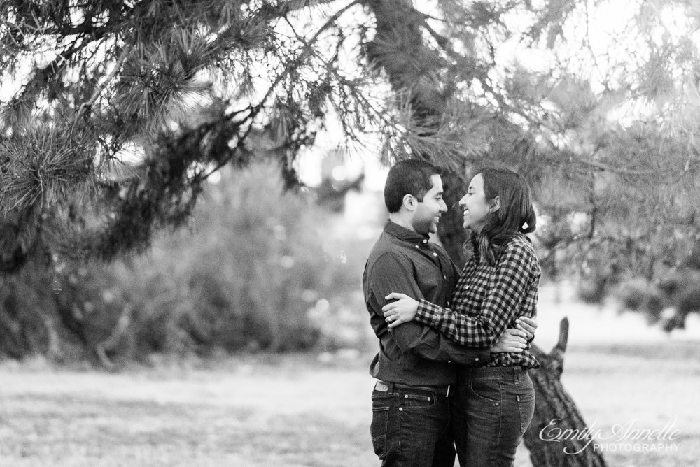 An engaged couple embraces among the trees at Gravelly Point Park in Arlington Virginia for an engagement session