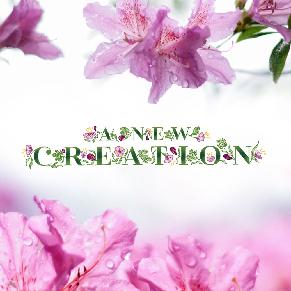 anewcreation_brandingbundleimage.jpg