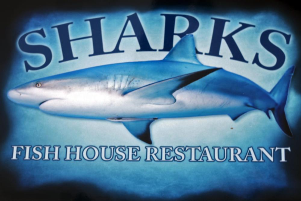 shark .png