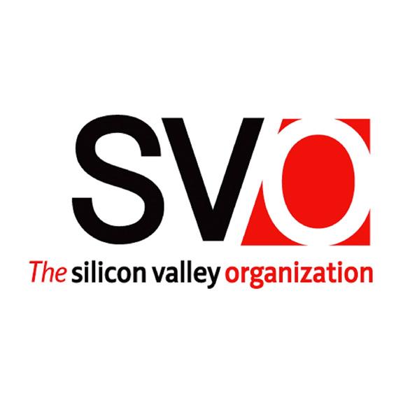The-Silicon-Valley-Organization.jpg