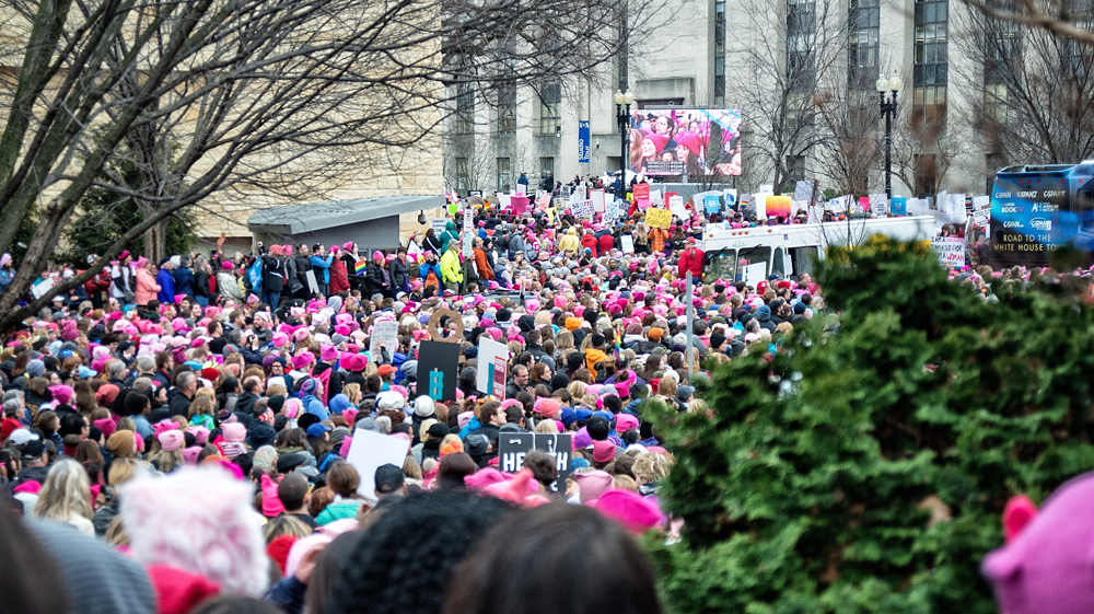 2017 Women's March on Washington 16.jpg