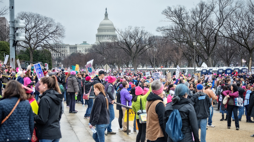 2017 Women's March on Washington 29.jpg