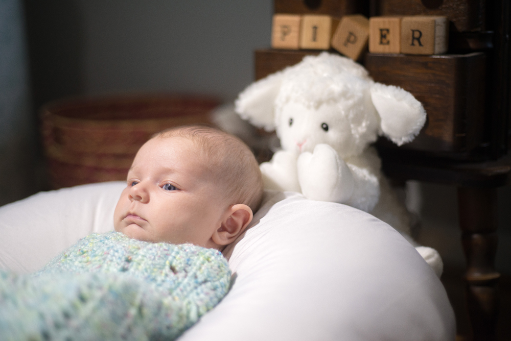 Copy of Newborn Photography in Annapolis, MD