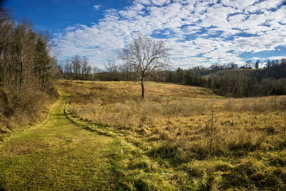 20180 Cromwell Valley Park 006b.jpg