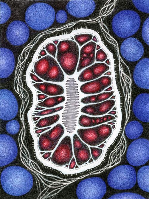 Internal Branches