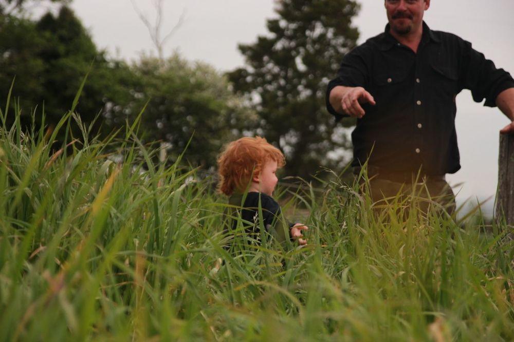 Grass13