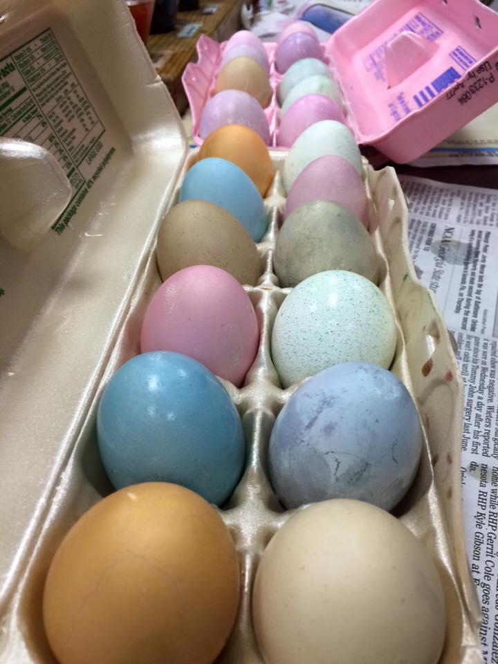egg9.jpg