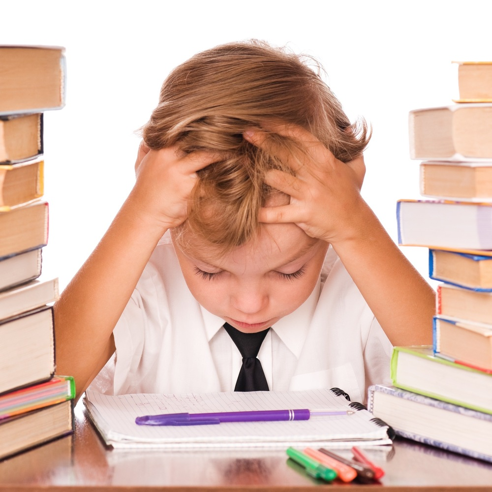 VDA'S NO HOMEWORK POLICY Every year, dozens of parents sit at my desk and describe to me the intense frustration they feel as they watch their children churned through the public schools. One of the refrains of their complaints: endless homework. Read more →