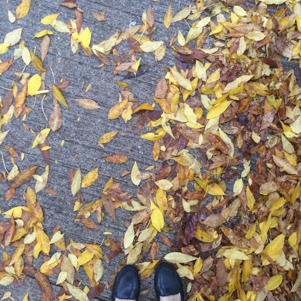 Toronto, Ontario - October 2016