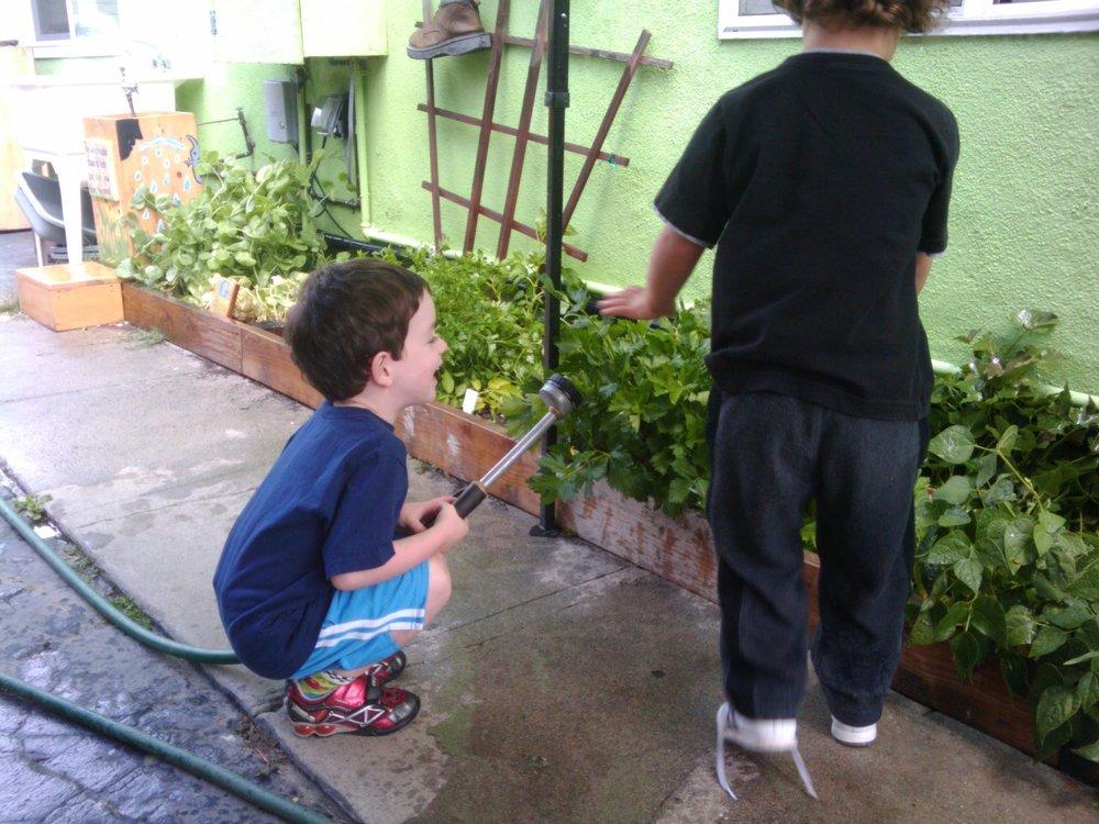 watering_carousel.jpg