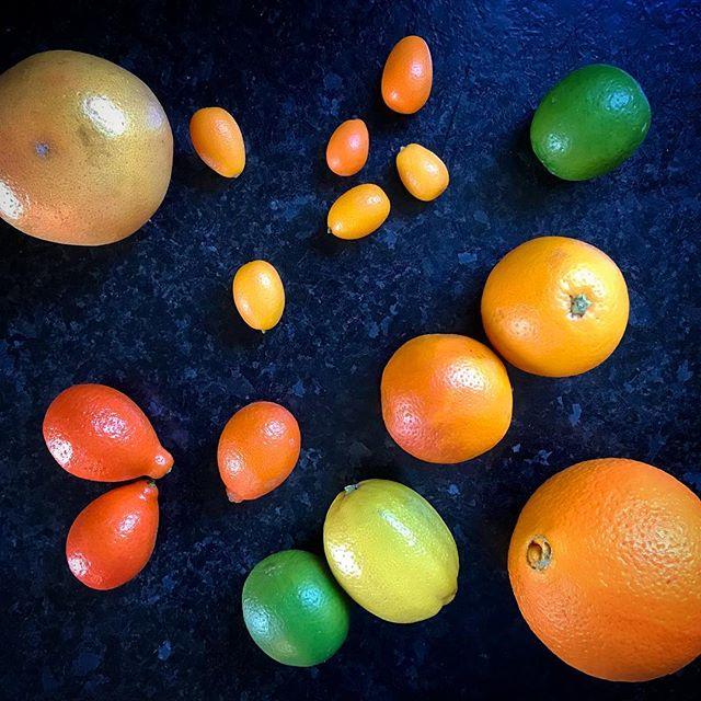 time for some serious citrus (+ cousins 😉) medley action!!! I see a lot of zesting & juicing on the horizon~~~ 🍋🍊🍋🍊🍋 #berkeley #winter #winterfruit #citrus #farmersmarket #fruit #lemon #orange #kumquat #lime #grapefruit
