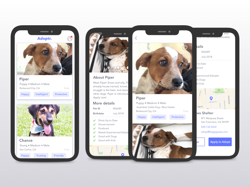 Fictitious pet adoption app
